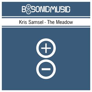 Kris Samsel - The Meadow (B-Sonic Blue)