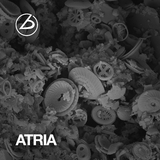 Atria by Labor & Ngrymn mp3 download