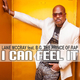 Lane McCray feat. B.G. The Prince of Rap I Can Feel It