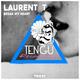 Laurent T Break My Heart