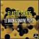 Le Brion & Shayne Pilpel Elastic Shade