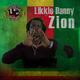 Likkle Danny Zion