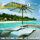 Local Hero The Future Sound of Paradise