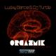 Lucky Garcia & DJ Turtle Orgazmik (Extended Mix)