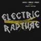 Lucky Punch Music feat. Christo 3lektric Electric Rapture