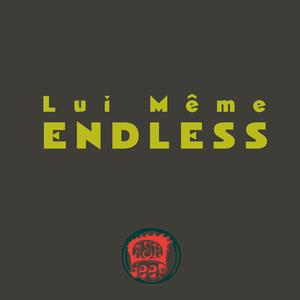 Lui Même - Endless (Dash Deep Records)