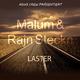 MALUM & Rajn Steckn Laster