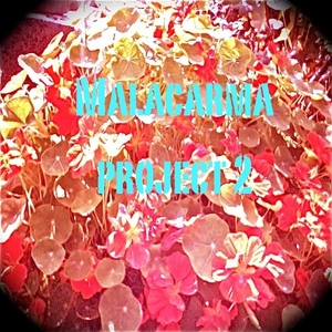 Malacarma Project - Malacarma Project Two (Blue Gypsy Records)