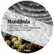 Mandibula Salt 'n' Pepper