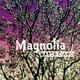 Marco Cianci Magnolia