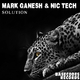 Mark Ganesh & Nic Tech - Solution