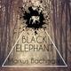 Markus Bachmann Black Elephant