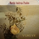 Martin Andreas Paulus Vuelve (Spanish Ballad)