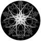 Martin Licht Pressure