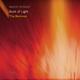 Martin Schmid - Book of Light(The Remixes)