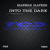 Into the Dark - Single by Marwan Jaafreh mp3 download