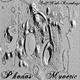 Maveric Phonos