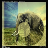 Elephant by Max Marotto & Tommy Boccuto mp3 download