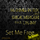 Maximilian Tux & Erick Mercuri feat. Dhany Set Me Free the Remixes