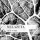 Melazeta Get Some