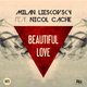 Milan Lieskovsky ft. Nicol Cache Beautiful Love