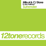 Surrender by Milo.nl & CJ Stone feat. Lizzy Pattinson mp3 download
