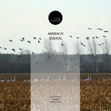 Swan by Mirbach mp3 download
