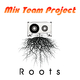 Mix Team Project Roots
