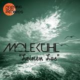 Leinen Los by Molekühl mp3 download