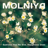 Sadness Has No End, Happiness Does by Molniya mp3 download