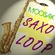 Moosak Saxo Loop