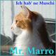 Mr. Marro Ich hab' ne Muschi(Single Version)