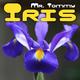 Mr. Tommy Iris