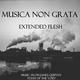 Musica Non Grata Extended Flesh: Music from James Quinn's Flesh of the Void