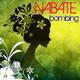 Nabate Bombing
