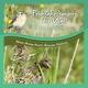Nature Healing Acoustics Relaxation Meditation Frühjahrskonzert der Vögel auf der Weide 2012