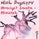 Nick Bugayev Moonlight Sonata / Minidesk