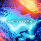 You Won''t Be Leaving Me by Nikola feat. Livingstone mp3 download