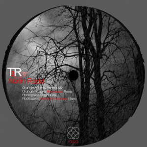 Norrin Radd - Orange in Love (T3R Records)