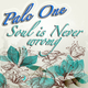 Palc One Soul Is Never Wrong