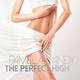 Pamela Landy The Perfect High