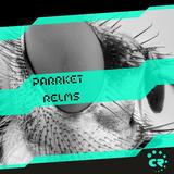 Relms by Parrket mp3 download