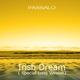 Passalo Irish Dream Special Long Version