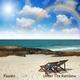 Passalo Under the Rainbow