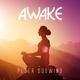 Peter Südwind Awake