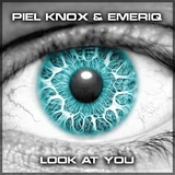 Look at You by Piel Knox & Emeriq mp3 download