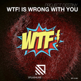 Wtf! Is Wrong With You by Project Destiny mp3 download