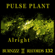 Pulse Plant Alright