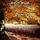 Red Eye Autumn Tree