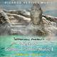 Ricardo M Tepperwein presents: Best of Golden Chillout-Music, Vol.1 (Healing Spirit)
